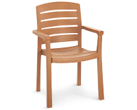 Model US119008 | Acadia Resin Chair with Wood Style Finish (Teakwood Finish)