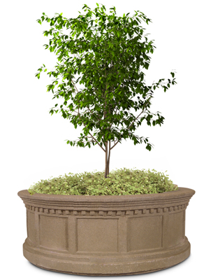 Model VPR66 | Victorian Series Concrete Planters (Light Brown | LSB Finish)