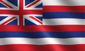 Hawaii State Flag Graphic