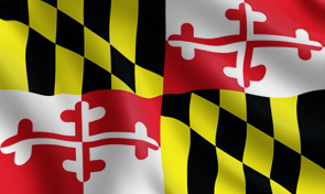 Maryland State Flag Graphic