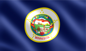 Minnesota State Flag Graphic