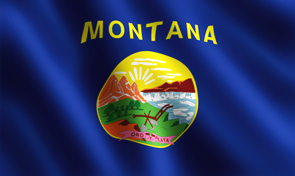 Montana State Flag Graphic