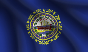 New Hampshire State Flag Graphic