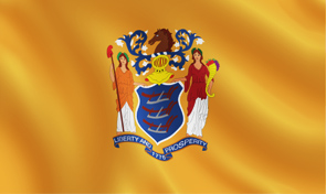 New Jersey State Flag Graphic