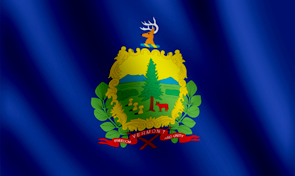 Vermont State Flag Detail