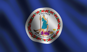 Virginia State Flag Detail