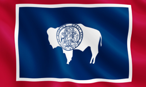 Idaho State Flag Detail