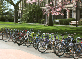 Bike Racks Scenery Image