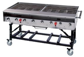 Model PG-SNGX | Stainless Steel Natural Gas Unit