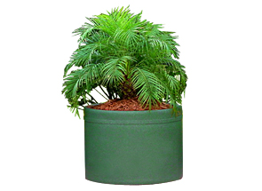 Model PL-3022 | Self Watering Plastic Planter (Green)