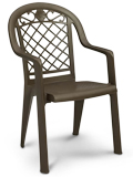 Model US413137 | Savannah Resin Chairs with Metal Style Finish (Bronze Mist)