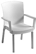 Model US903004 | Havana Armchair with White Wicker Finish